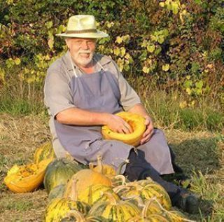 Styrian Pumpkin Oil Reviews