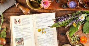 The Doctor's Book Of Survival Home Remedies Book Download