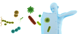 Upwellness Probiotic Plus Pills - Is It Safe?