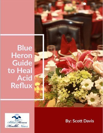 Scott Davis The Acid Reflux Strategy Progrm eBook