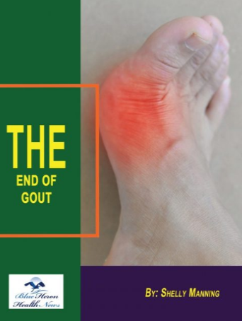 The End Of GOUT Program Review