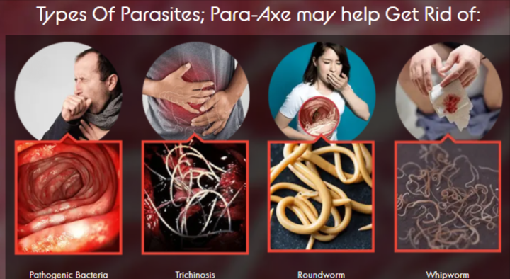 Para Axe Plus Cleanse Supplement Review